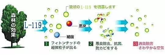 product32.jpg